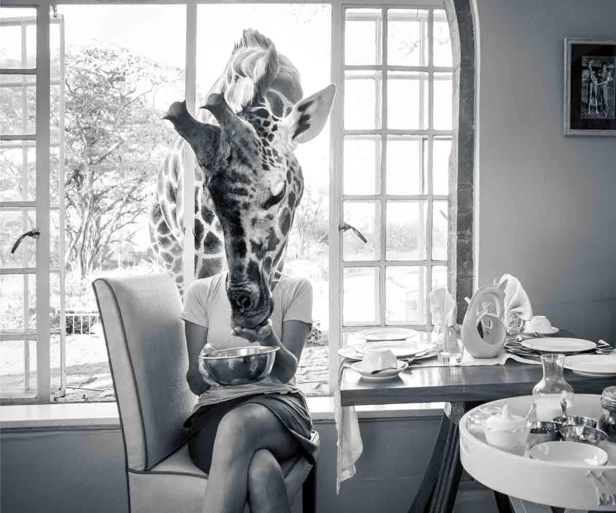 Giraffe Manor Kenya: A Guide