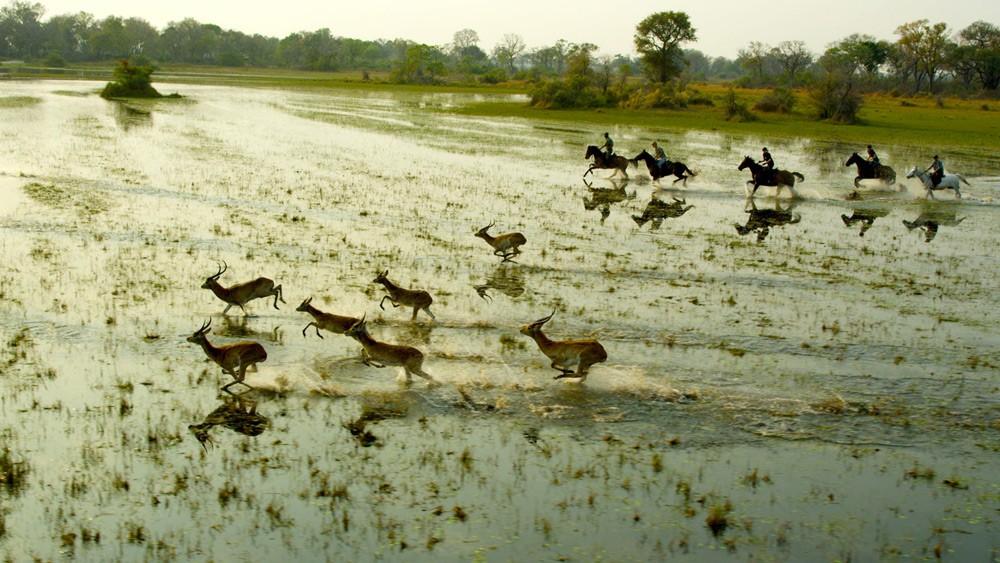 Botswana Horseback Safari