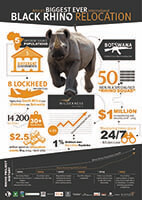 Africas Biggest Ever Black Rhino relocation