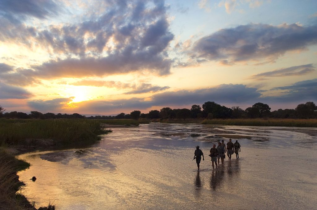 Experience a Walking Safari in Zambia
