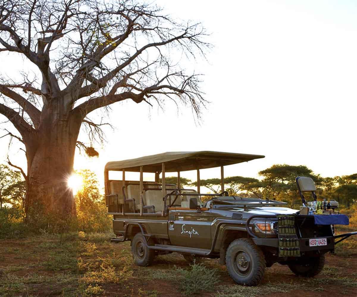 Singitas Black Rhino Translocation